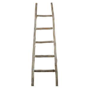 Primitive Display Ladder - L